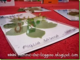 Mamme Che Leggono 2013 - 17 ottobre (8)