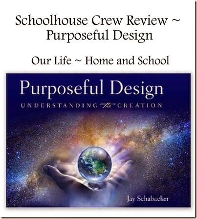 Purposeful Design ~ Book Review