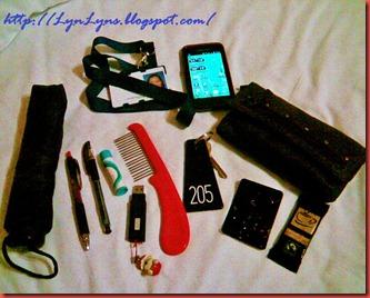Handbag _purse