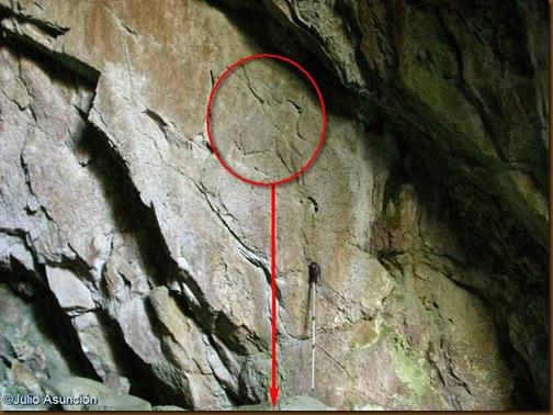 Cuevas de Artetxe - Posible grabado de cabeza de uro