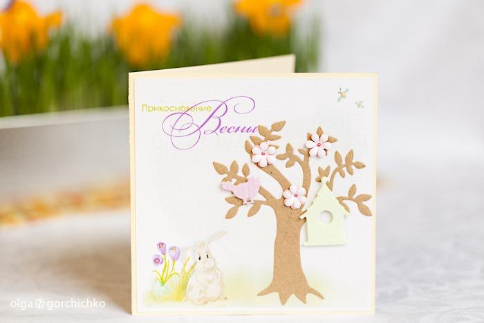 Конверты для дисков и фотографий, открытки. Весенний фотопроект Прикосновение весны