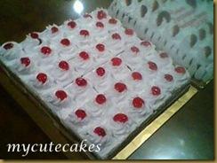 Chocolate sponge cakes 004