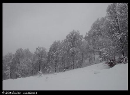 2014-01-17 (109)c (Large)