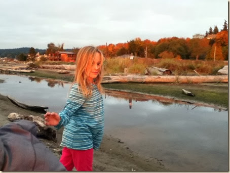 Maxwelton beach 042