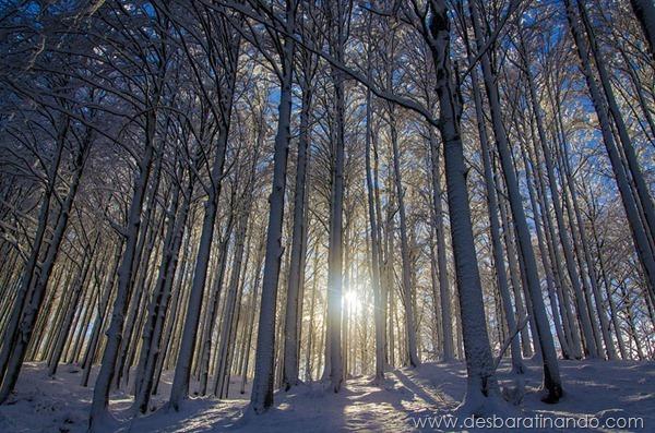 paisagens-de-inverno-winter-landscapes-desbaratinando (13)