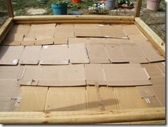 Cardboard bottom layer of bed 1