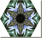あじさい万華鏡6角形