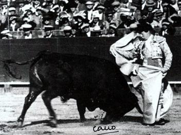 Sevilla Pepe Luis Chicuelina 001