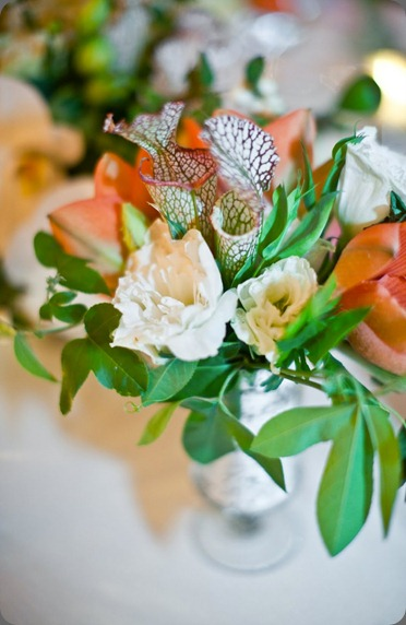 101030_a&a_00557_Small flowerwild