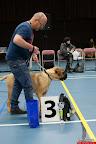 20130511-BMCN-Bullmastiff-Championship-Clubmatch-1628.jpg