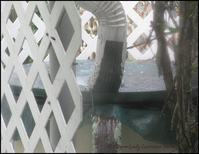 08-27-rain-barrel