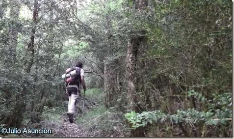 De camino a la Cueva de Azanzorea - Valle de Ronccal