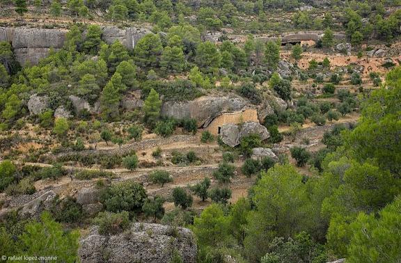 Antics bancals de conreu abandonats i una maset construït sota una balma al racó de les Pinedes, sota la punta de l'Ereta, Montsant, Parc Natural,Cabacés, Priorat, Tarragona