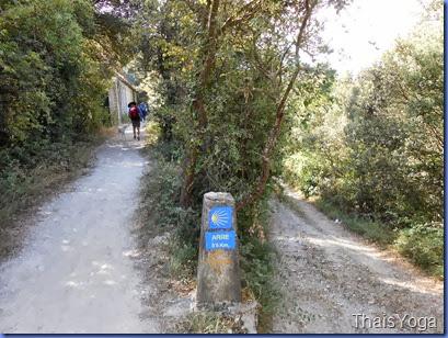 caminho de santiago 423