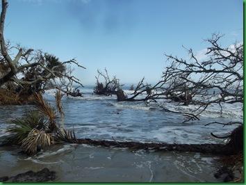 Last day at Hunting Island 037