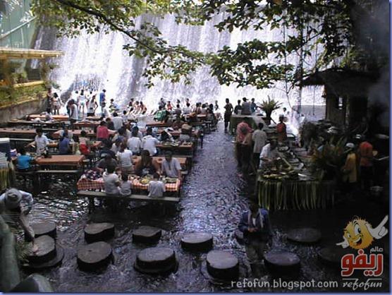 مطعم تحت الشلالات عالم ريفو 6