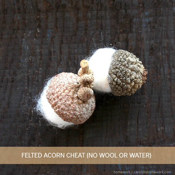 Felted Acorn Cheat via homework