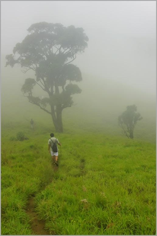 Kudremukh peak trail