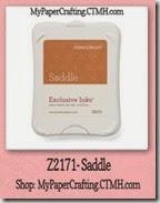 saddle-200