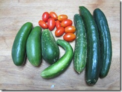 Cucumbers and Juliet tomatoes