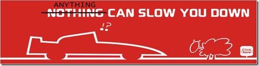 ALFA Slow 2