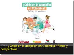Foro Crisis adopcion