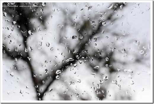 140207_rain_drops
