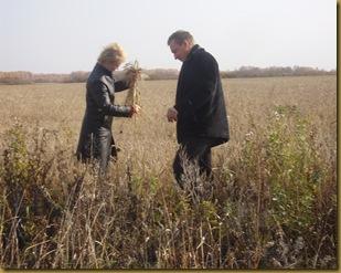В поле 2008 020