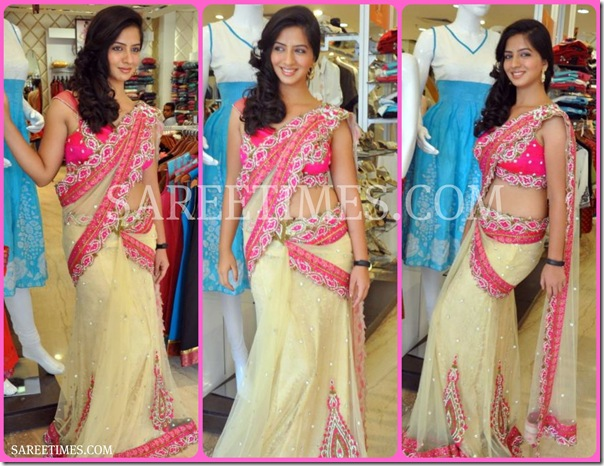 Nisha_Shah_in_Shimmer_Saree
