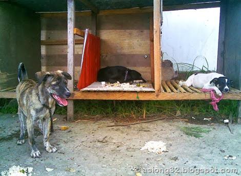 05262011(012)jlmh