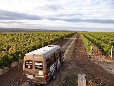 Basarabia - Drumul Vinului: Vinomobilul