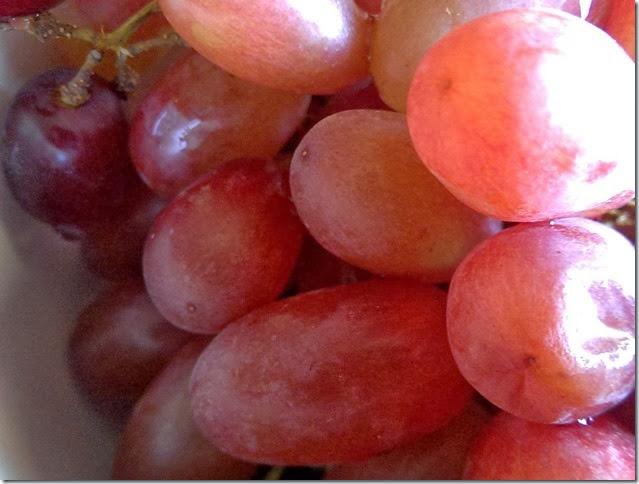 grapes-public-domain-pictures-1 (2220)
