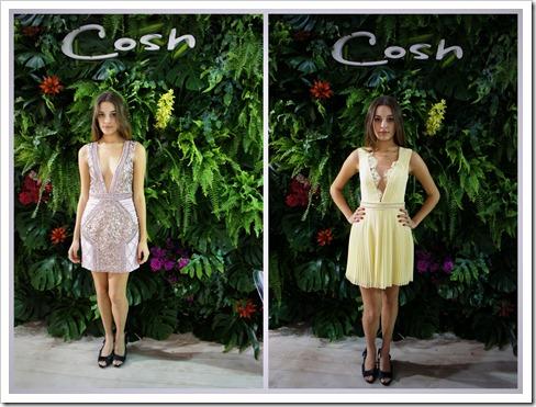 Cosh 2