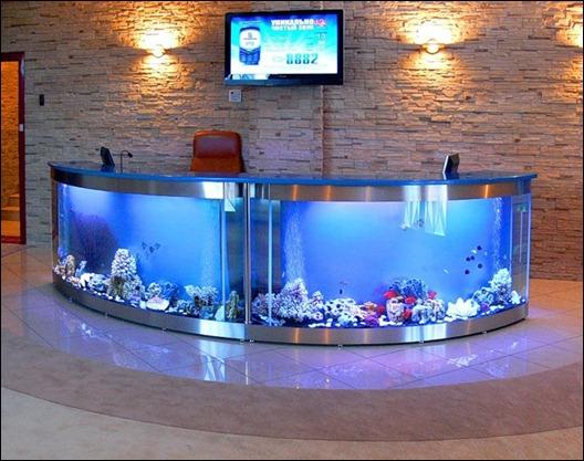 1262199351_aquarium