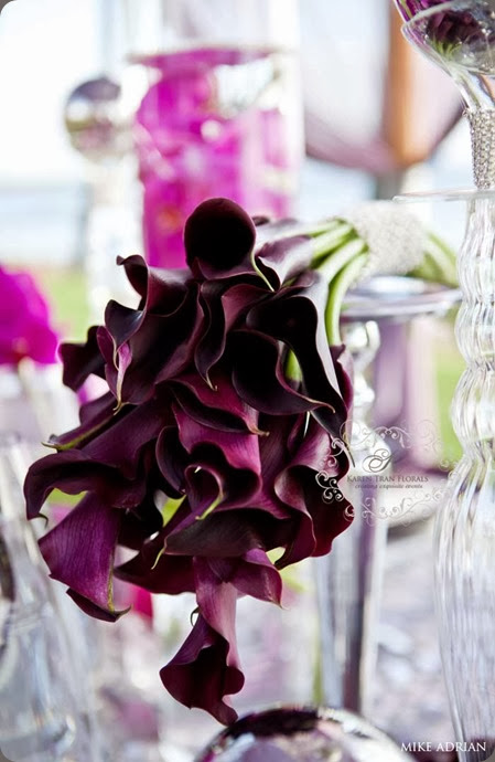 black callas purple-plum-calla-lilies-weddings karen tran