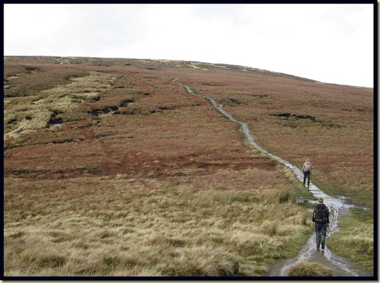 The path to Mill Hill