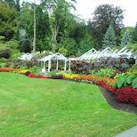 stanley park in Vancouver, British Columbia, Canada