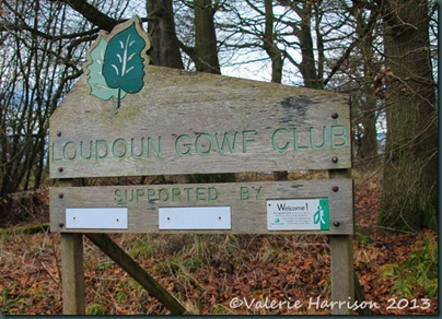 53 Loudoun-Gowf-Club
