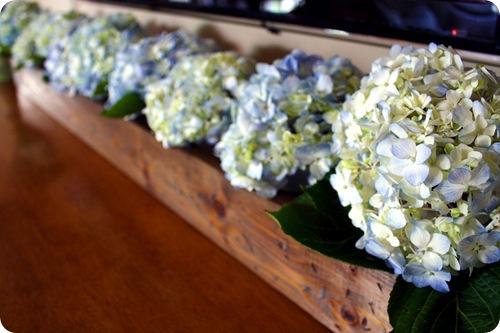 trough of hydrangeas