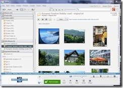 picasa screen showing the albums I created