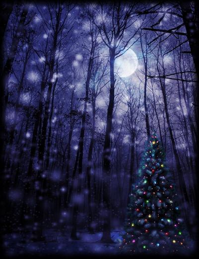 luna de navidad