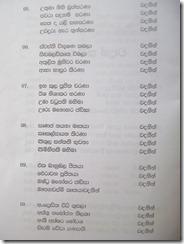 DSC06557