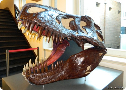 Jurassic Lounge at Australian Museum-  Halloween 2012 (10)