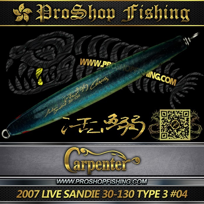 carpenter 2007 LIVE SANDIE 30-130 TYPE 3 #04.2