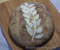 Maori-Bread 040