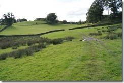 Hill Top walk--field after woods
