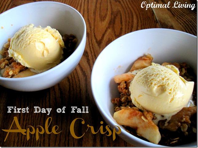 Apple Crisp 14