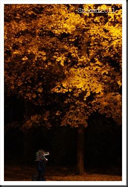 2011 10 31 _MG_6533cw