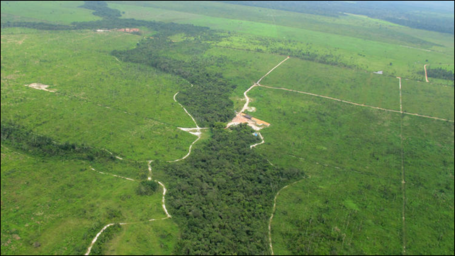 An image taken from a plane over Brazil's Maranhao state in 2012 shows the contrast between what little remains of the rainforest there and vast areas that have been razed. Photo: Vincent Bevins / LA Times