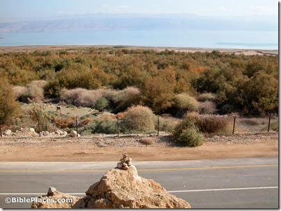 Dead Sea view of lake from above PEF Marker, tb011703401